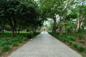 hamilton park Jersey city